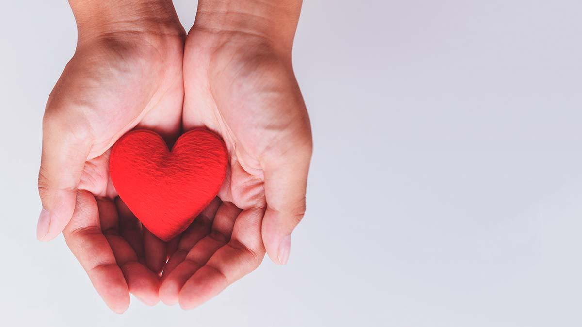 El significado de empatía, su importancia y algunos ejemplos